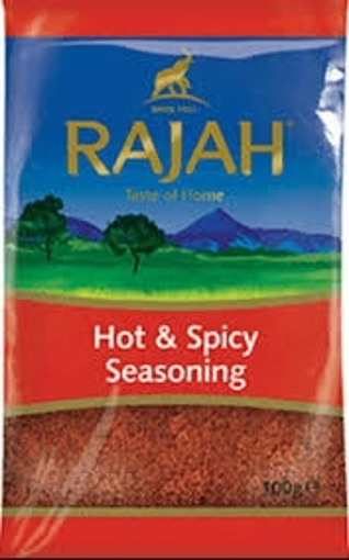 Rajah Hot & Spicy Seasoning 100g