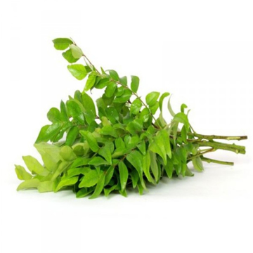 Curry Leaves Bunch